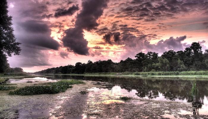 Bayou Teche Sunset